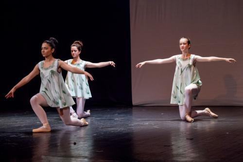 dkos baletni-studio-2014 baletni-kolaz 008