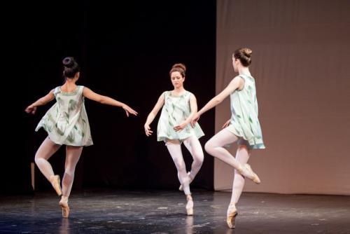 dkos baletni-studio-2014 baletni-kolaz 010