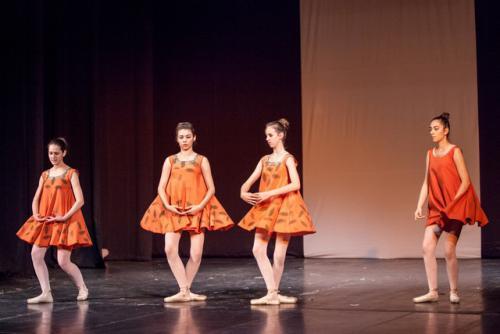 dkos baletni-studio-2014 baletni-kolaz 018