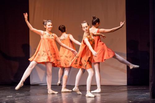 dkos baletni-studio-2014 baletni-kolaz 020