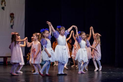 dkos baletni-studio-2014 baletni-kolaz 050