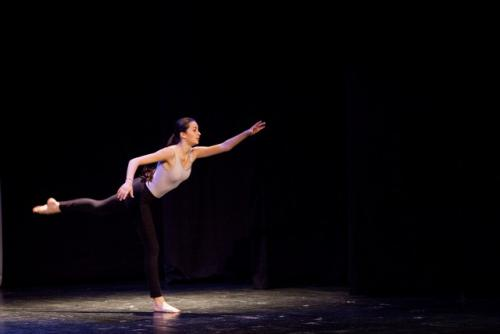 dkos baletni-studio-2014 baletni-kolaz 114