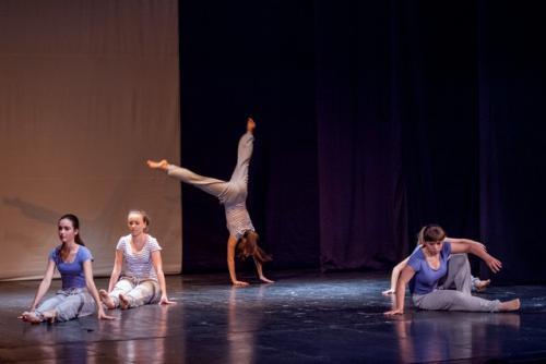 dkos baletni-studio-2014 baletni-kolaz 121