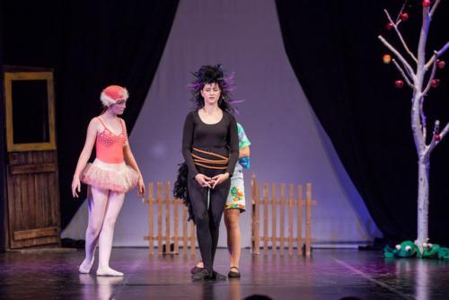 DKOS godisnja produkcija baletnog studija 2015 300