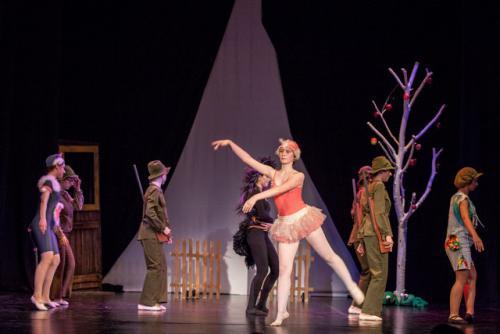 DKOS godisnja produkcija baletnog studija 2015 317