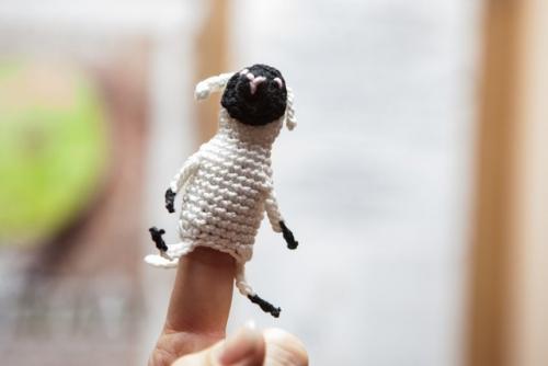 dkos deveta ovcica 02